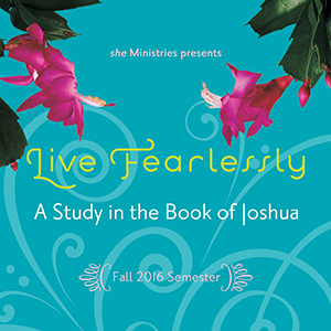 Live Fearlessly: A Study in the Book of Joshua - 2016 Series Art